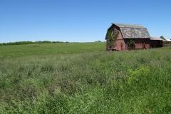 farm1664
