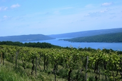 canandaigua Lake-sunset cove
